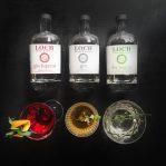 Loch's Gin Family
